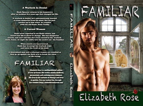 Familiar500BookCover5_25x8_Cream_170