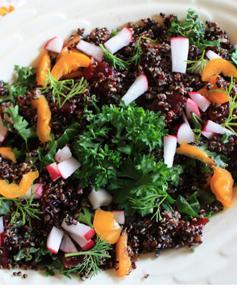 quinoa2close
